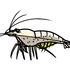 最強のコケ取り生体ヤマトヌマエビについて解説していく