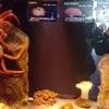 【閲覧注意】沼津港深海魚水族館に行ってきました。