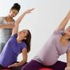 脂肪動員を活性化(交感神経系物質、etc)したり抑制(インスリン、グルコースetc)したりする条件