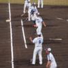 2月沖縄、球春到来