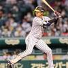 来季プロ野球注目選手 阪神 小幡竜平選手