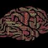 【ゲーム情報】ニッチな「漁業ゲー」からメジャーな「脳トレ」まで、今週発売の注目タイトル![2019年12月第4週]