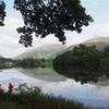 イギリス湖水地方のフットパスを歩く グラスミア湖からラフリグ・テラス(Loughrigg Terrace)まで