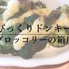 ブロッコリー嫌いでも食えるびっくりドンキーの隠れた人気メニュー『ブロッコリーの箱舟』