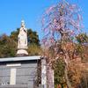 霊園風景 その3 「観音様に守られて」