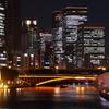 都会の桜 - 天満橋