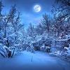 2020年1月11日半影月食・蟹座満月のスピリチュアルメッセージ