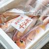 2019年4月23日 小浜漁港 お魚情報