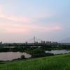 大阪に引っ越してきて1ヶ月の我が家♡だからどうした、ということもないのだが(笑)