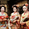 Kimono Flea Market ICHIROYA's News Letter No.721