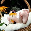 ココナラで子宝占い。無料会員登録でお得に占いする方法