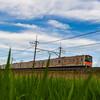 鉄道写真家・中井精也さんの「いつもの公園」へ行ってきました