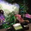 【どこかにマイルで福岡旅8】恐竜ロボットがお出迎え「変なホテル福岡博多」宿泊記