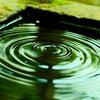 「一心法界三昧」弁栄上人は24歳のとき筑波山に二ヶ月こもって日夜念仏を唱える修行をおこなった。」