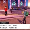 ポケモン剣プレイ中8