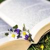 ◆朗読ができるのなら、どんなときでも、大丈夫♬