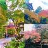 日吉神社⛩