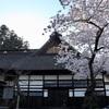 多摩川桜百景 -77. 広徳寺-