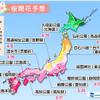 最新の1ヶ月予報では全国的に暖かくなりそう!!西日本・東日本では桜の開花も早まる予想!!