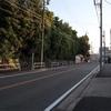静岡旅行⑴