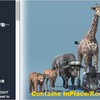 African Animal Pack 2 アニメーションが豊富で面白い!アフリカに生息するリアルな「動物」の3Dモデルパック