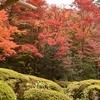 京都 詩仙堂 四季折々の風景が楽しめる山荘でしばし時を忘れる  (Kyoto, Shisendo)