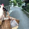 鎌倉 夏のワークショップでミニサイズの籠巾着チャーム作り