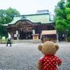 坐摩神社の鷺草