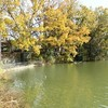 晩秋の唐池公園