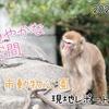 【レポ#21】平日昼間の千葉市動物公園現地レポート(2021/3/4)【前編】