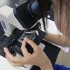 夏休みの自由研究!5年生におすすめは?顕微鏡や実験・天気など