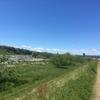 多摩川から玉川上水へ(ショートコース)