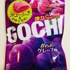 【グミ紹介】GOCHI(ゴチ)グレープ味の感想・評価と情報ー弾力感が売りのフルーツ系グミー