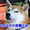 真夏の雪まつり NDA 桧枝岐村大会1(プロローグ)