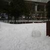 今季最強の寒波襲来>>本日の新潟市中央区の様子。