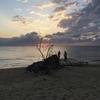 沖縄観光、渡久地ビーチ、嘉津宇岳、石川岳、Tリーグ琉球アスティーダ