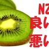 6ヶ月住んで分かった、ニュージーランドの良いとこ・悪いとこ ~NZワーホリ総集編~
