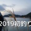 【高知シーバス】2019初釣り!朝からボイルに大興奮・・・