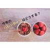 【バレンタイン】超簡単なチョコ作りのための準備