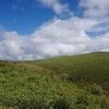 霧ヶ峰で花の八島湿原とガスの車山を行く