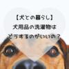 【犬との暮らし】犬用品の洗濯物はどうするのがいいの?