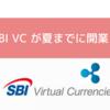 SBI VCが今夏までの開業を目指し準備中!4種取り扱い予定