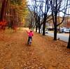 秋の八ヶ岳をサイクリング|おすすめコースも!
