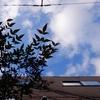 作曲工房 朝の天気 2017-11-10(金)雲の多い晴れ