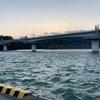 2月15日美々津漁港(耳川釣行)
