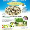 いちごの受粉へ交配用ミツバチ
