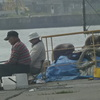 夏ブリと戻りブリ/今日の紋別港釣り情報