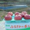 秋田県のリンゴが届きました。