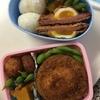 今日の弁当と台所
