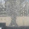 豊田の鷲取神社の社記